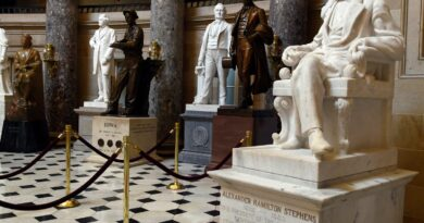 house-passes-bill-to-remove-confederate-statues-from-the-capitol-–-usa-today