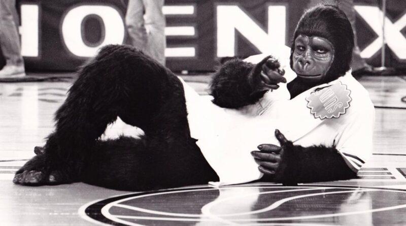 phoenix-suns'-'original-gorilla'-explains-strange-story-behind-the-legendary-mascot-–-12news.com-kpnx