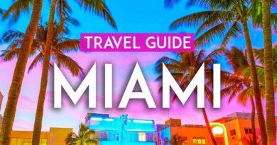 MIAMI travel guide 2021 | Experience Miami