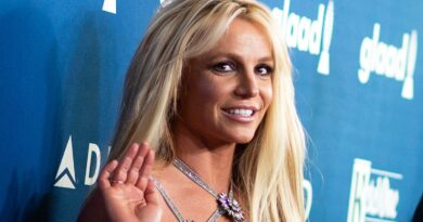 judge-denies-britney-spears'-request-to-remove-father-from-conservatorship,-for-now-–-usa-today