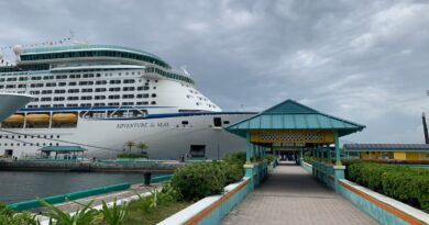 four-vaccinated-adults,-two-unvaccinated-children-test-positive-for-covid-on-royal-caribbean-ship-–-usa-today