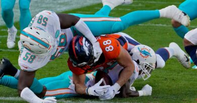 for-a-player-like-the-dolphins'-jason-strowbridge,-a-final-preseason-game-could-mean-everything-–-palm-beach-post