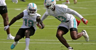 dolphins-to-face-agonizing-decisions-at-wide-receiver.-and-something-team-hopes-to-exploit-–-miami-herald