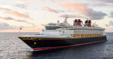 cruise-lines-buck-gov.-desantis-'vaccine-passport'-ban-in-favor-of-bahamas-policy-–-florida-politics