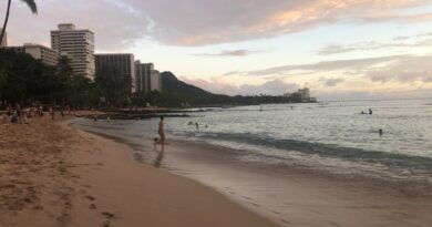 woman-arrested-for-using-fake-'maderna'-vaccine-card-during-hawaii-trip-–-usa-today