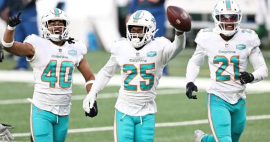 grading-the-miami-dolphins'-roster-and-what-that-might-mean-for-2021-regular-season-–-miami-herald