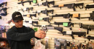 florida-supreme-court-agrees-to-hear-post-parkland-case-about-local-gun-regulations-–-miami-herald