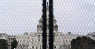 live-updates:-rally-for-capitol-riot-suspects-opens-with-small-crowd-of-protestors-amid-heavy-security-–-usa-today