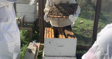 the-miami-apiculture-society:-bigger-and-bee-tter-than-ever-–-miami-student