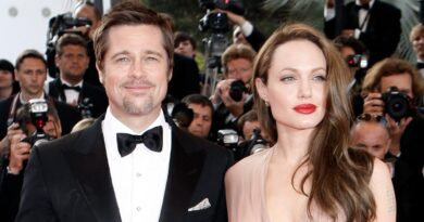 california-supreme-court-denies-brad-pitt's-appeal,-custody-case-with-angelina-jolie-likely-to-start-over-–-usa-today