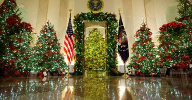 fact-check:-posts-falsely-claim-white-house-is-referring-to-christmas-trees-as-'holiday-trees'-–-usa-today