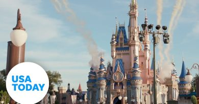 How to get the most from your trip to Disney World | USA TODAY